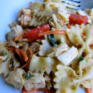 Healthy Satay Chicken Pasta Salad