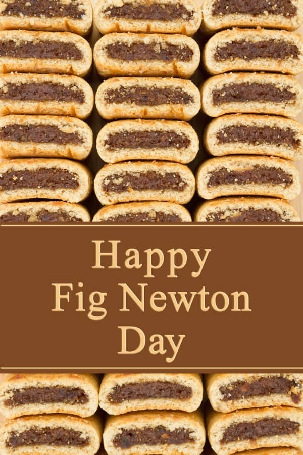 Happy Fig Newton Day - January 16th