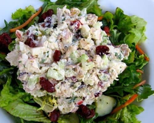 Healthy Chicken Salad with Apples and Cranberries - 3 WW Freestyle SmartPoints