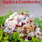 Scoop of low fat chicken salad with apples and cranberries on bed of lettuce.