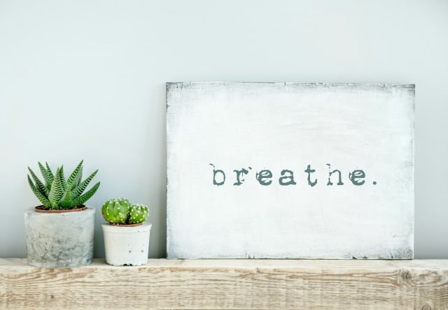 White Breathe Sign on Mantle beside Cactus Plants