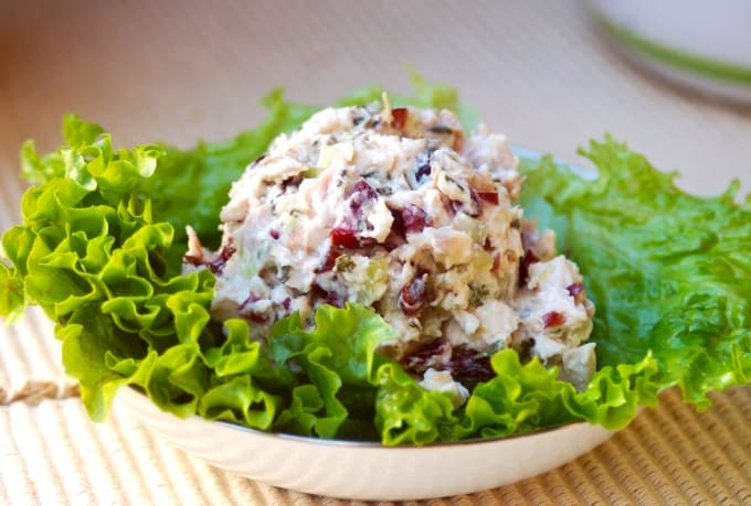 Scoop of low fat chicken salad with cranberries and apples on green lettuce.