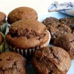 2 Ingredient Skinny Chocolate Pumpkin Muffins and Cookies