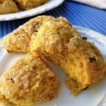 Weight Watchers Low Fat Cranberry-Pumpkin Scones