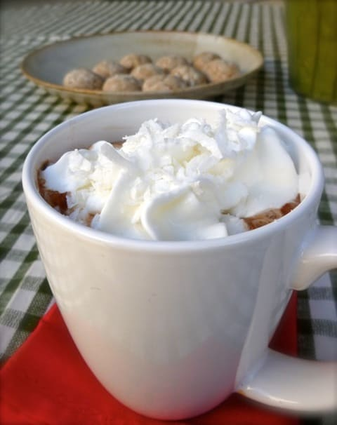 Weight Watchers Friendly Coconut Hot Cocoa in Celebration of National Cocoa Day - December 12th