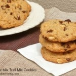 Easy Trail Mix Cookies
