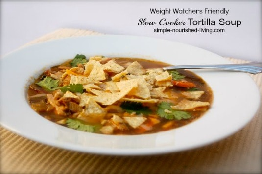 Crock Pot Chicken Tortilla Soup with Black Beans