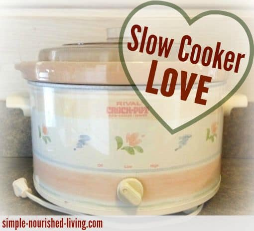 slow cooker love my year of weight watchers friendly slow cooking