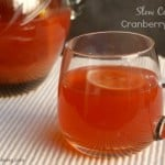 Slow Cooker Cranberry Punch