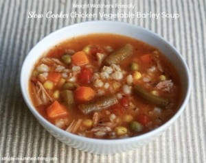 Slow Cooker Chicken Vegetable Soup