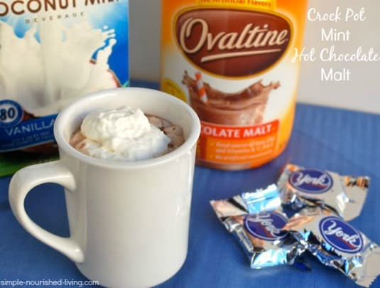 Malted Mint Hot Chocolate topped with whipped cream in white mug near mini peppermint patties.