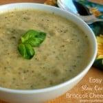 easy slow cooker broccoli soup text