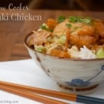 Healthy Slow Cooker Chicken Recipes - Slow Cooker Teriyaki Chicken