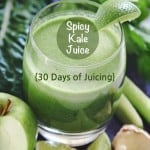 Super Green Spicy Limeade
