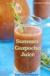 Summer Gazpacho Juice Recipe