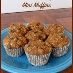 Banana Oatmeal Chocolate Chip Mini Muffins