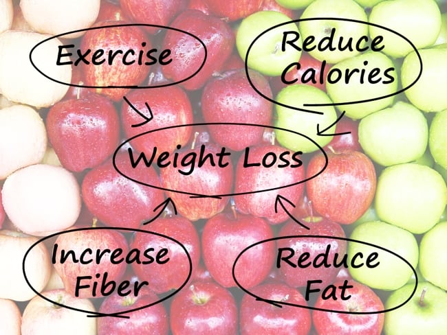 Weight loss graphic with the words exercise, reduce calories, increase fiber and reduce fat circled with an arrow pointing to the circled term weight loss with red and green apples in the background