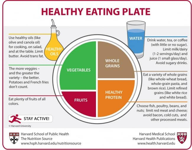 Harvard Healthy Eating Plate Graphic Showing a Dinner Plate with Four Sections for Vegetables, Fruits, Healthy Protein and Whole Grains