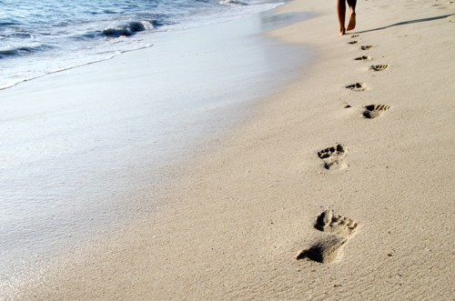 Healthy Weight Loss By Walking 10,000 Steps Each Day
