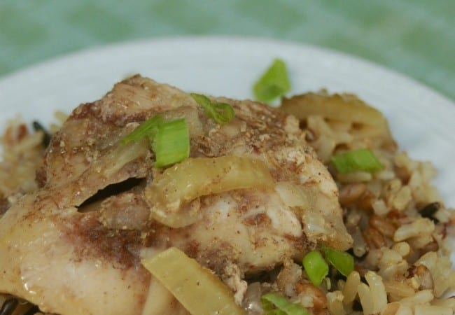 Skinny Slow Cooker Chinese 5 Spice Chicken