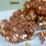 weight watchers no bake chocolate peanut butter squares