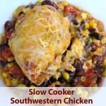 Weight Watchers Southwestern Slow Cooker Chicken Only 9 SmartPoints
