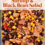 Zest shrimp salad with black beans, corn and brown rice up close.