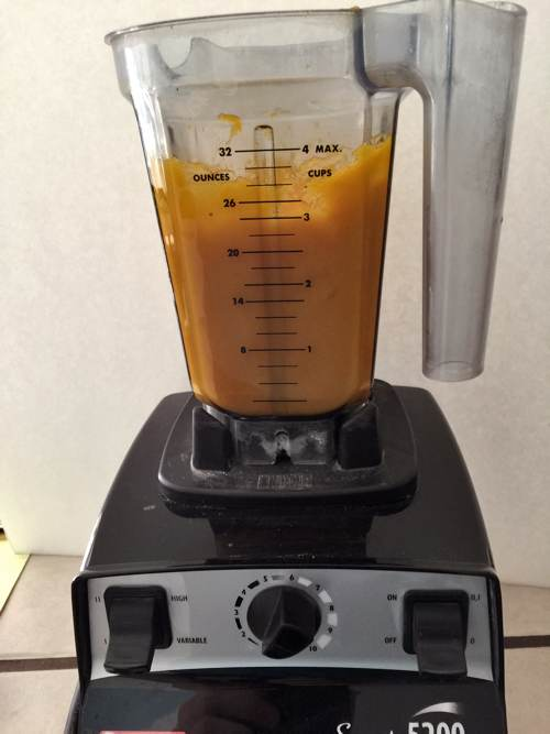 Fresh Pumpkin Puree in VitaMix