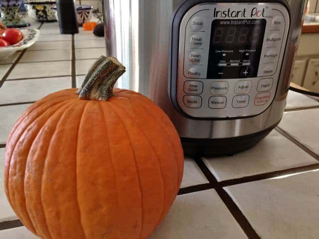 Pie Pumpkin and Instantpot