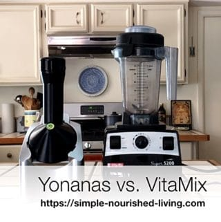 Yonanas vs. VitaMix Frozen Dessert Maker Review