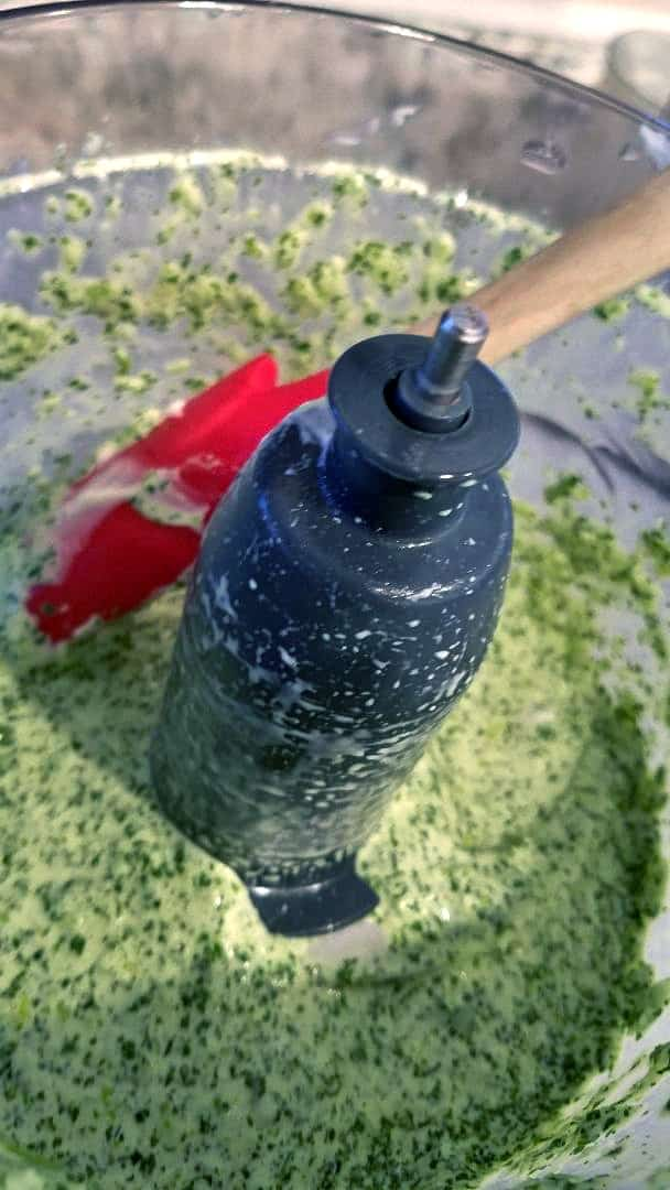Mixing spicy Peruvian ahi verde sauce in food processor.