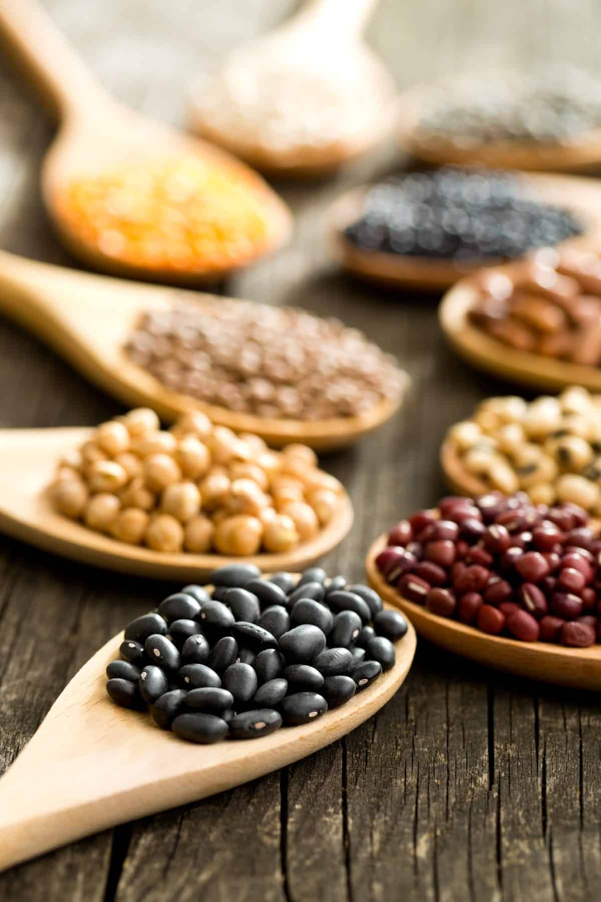 Assorted dry beans on wooden spoons on wood table