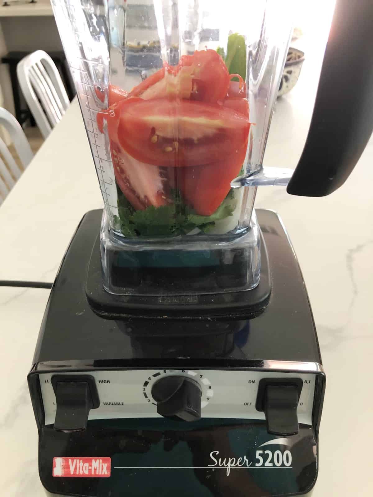 Tomatoes, cilantro and onion in Vitamix blender container.