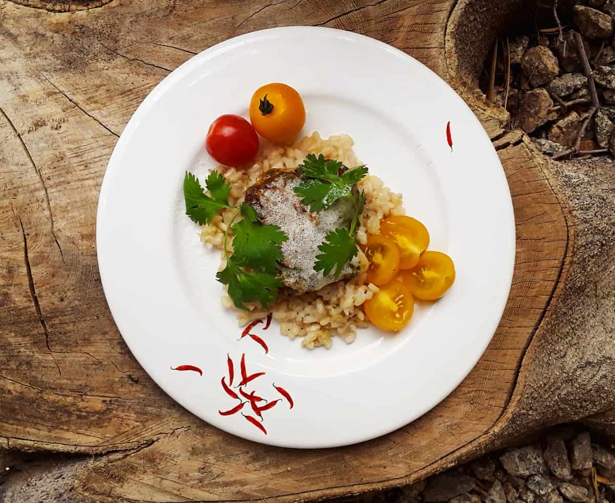 Creamy Pesto Chicken with rice and tomatoes on white plate.