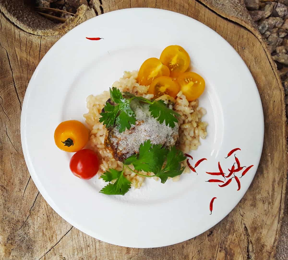 Creamy Pesto Chicken on white plate over rice with fresh tomatoes.