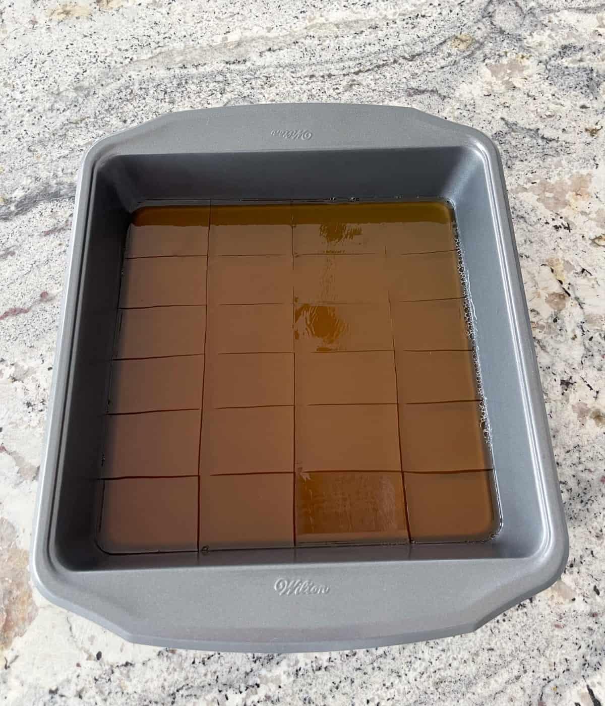 Apple cider vinegar knox blox in pan on granite counter.